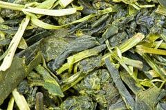 Macro of green tea leaves Royalty Free Stock Images