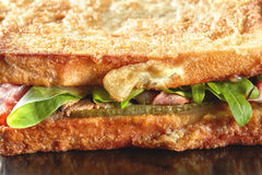 Macro grilled ham sandwich Royalty Free Stock Photography