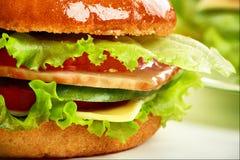 Macro hamburger Royalty-vrije Stock Afbeeldingen