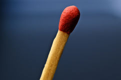Macro of the head of an unused match stick Royalty Free Stock Photography