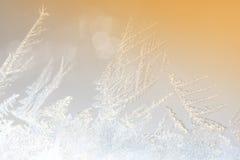 Macro ice crystals Royalty Free Stock Photography