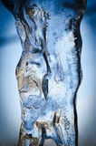 Macro icicle. Cold blue icicle in garden Royalty Free Stock Image