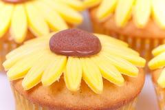 Macro illustration des gâteaux de tournesol Photographie stock libre de droits