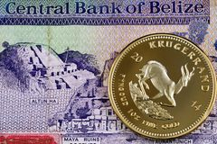 Close up image of a Belize two dollar bill with a close up of a gold one ounce krugerrand. A macro image of a Belize two dollar bill with a golden one ounce stock image