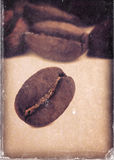 Macro image of coffee beans and vintage style, worn photo paper.  stock image