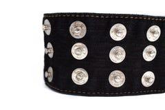 Macro image de ceinture noire de jeans avec beaucoup de boutons sur un fond blanc, l'espace de copie photographie stock libre de droits