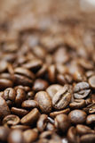 Macro image of decaffinated  coffee beans. Royalty Free Stock Images