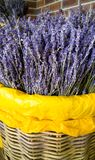 Macro image of dry lavender flowers. Lavender is used in aromatherapy and medicine royalty free stock photos