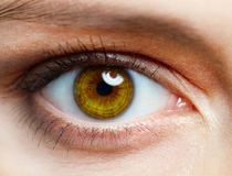 Human eye. Macro image of human eye royalty free stock photography