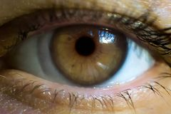 Macro image of human eye with contact lens Royalty Free Stock Photo