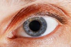 Macro image of human eye. Macro detail photo of open human eye Royalty Free Stock Photos