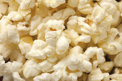 Macro image of pop corn Stock Image