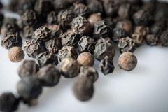Dried Black Pepper Piper nigrum seeds, closeup and selective focus. royalty free stock images