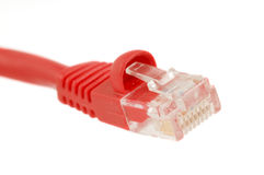 Ethernet Cable Connection Stock Photo