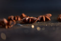 Macro image of star anise. Eastern seasoning for desserts Royalty Free Stock Photography