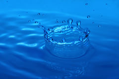 Macro Image of Water Drop Forming Crown Stock Image
