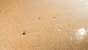 Macro image of wet sand and stones on sea beach. Bright sun reflecting in sea waves. Macro photo of wet sand and stones on sea beach. Bright sun reflecting in royalty free stock photos