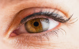 Macro image of woman eye Royalty Free Stock Photos