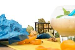 Macro immagine del vetro del dessert isolata su un fondo bianco Frullato accanto al physalis ed alle albicocche secche Fotografia Stock Libera da Diritti