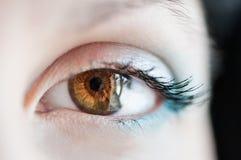 Macro immagine dell'occhio umano fotografie stock
