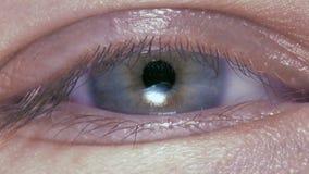 Macro immagine dell'occhio umano archivi video