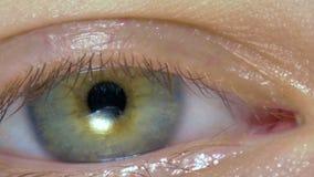 Macro immagine dell'occhio umano video d archivio