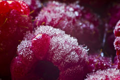 Macro juicy red raspberries. Under the ice Royalty Free Stock Photography