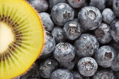 Macro Kiwi and Blueberries Royalty Free Stock Photos