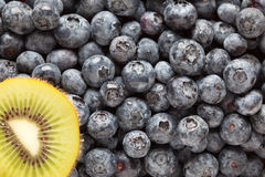 Macro Kiwi and Blueberries Stock Images