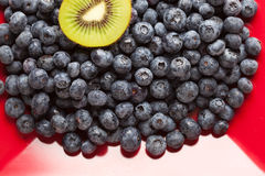 Macro Kiwi and Blueberries on Red Dish Royalty Free Stock Photo