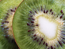 Macro kiwi-fruit. Macro close-up kiwi green sweet juicy fruit Stock Image