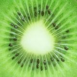 Kiwi fruit texture Royalty Free Stock Images