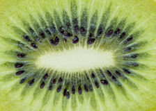 Macro kiwi fruit for background. Stock Images