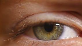 Macro knipperend de wimperskind van het close-upoog stock videobeelden