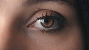Macro lampeggiamento dell'occhio del ` s della donna di Brown del primo piano stock footage