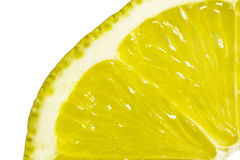 Macro lemon Stock Photography