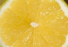 Macro of Lemon Stock Image