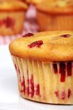 Macro Lemon Cranberry Muffin Royalty Free Stock Images