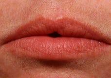 Macro lippen Royalty-vrije Stock Fotografie