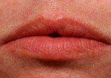 Macro lips. Close-up of a woman lips royalty free stock photography