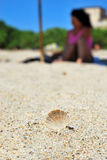 Macro of a little brown shell on the sand in the beach with the. Shape of a girl with a pink costume behind royalty free stock photography