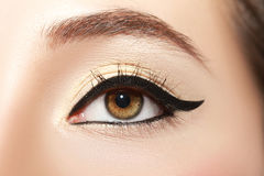Macro make up Royalty Free Stock Photo