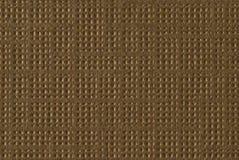 Macro marrón clara Imagenes de archivo