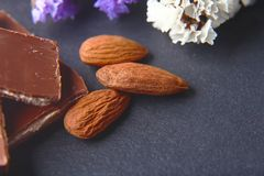 Macro milk chocolate with almonds, flowers on a shale board, place to copy text, set stock image
