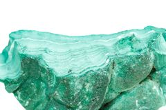 Macro mineral stone Malachite in the rock on a white background. Close up royalty free stock images