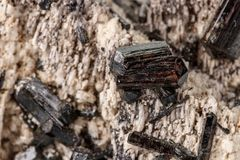 Macro mineral stone Schorl, Black Tourmaline on the feldspar on a white background. Close-up royalty free stock images