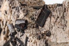 Macro mineral stone Schorl, Black Tourmaline on the feldspar on a white background. Close-up stock photography