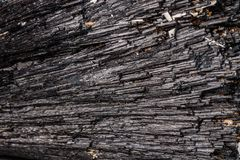 Macro mineral stone Schorl, Black Tourmaline on a white background. Close up stock images