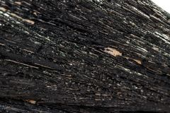 Macro mineral stone Schorl, Black Tourmaline on a white background. Close up royalty free stock images