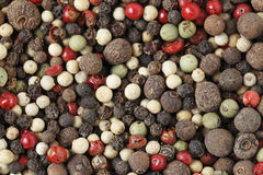 Macro of mixed peppercorns Stock Photography